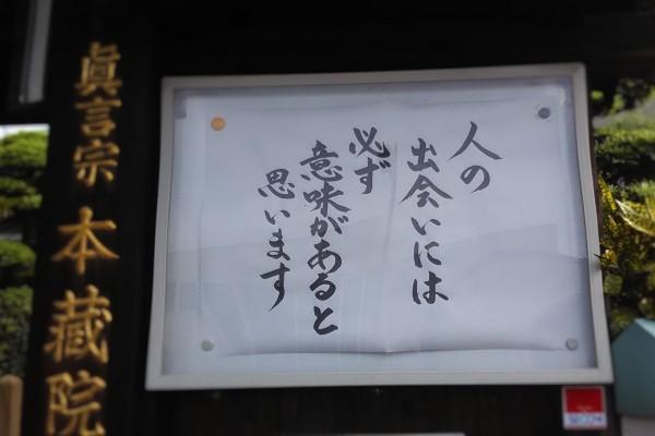 DSC_0224